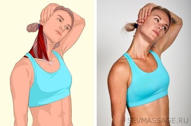 Растяжка боковых сгибателей шеи спомощью рук