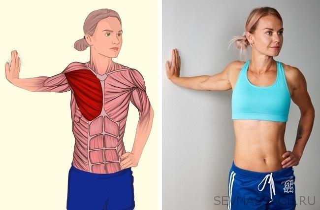 Растяжка грудных мышц устены