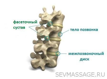 Растянутая грудная фасция. Фасеточный синдром.